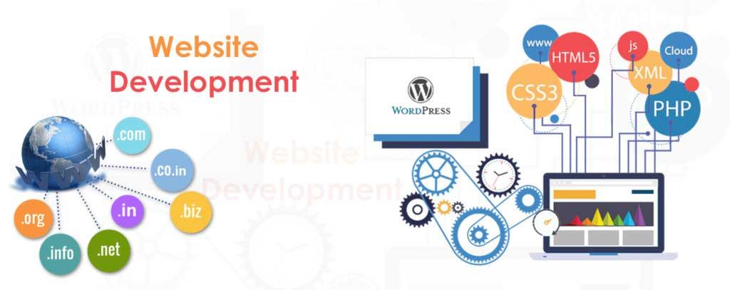 Web Development Service Company   Web Development Agency in